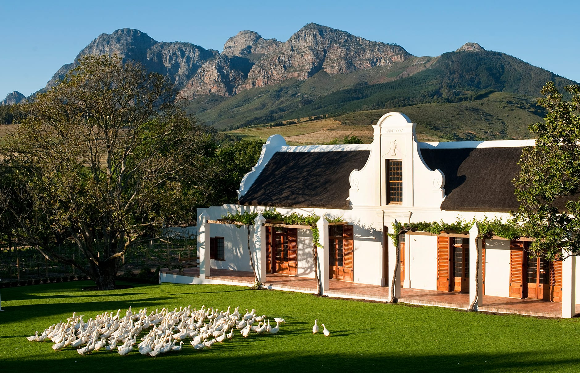 Babylonstoren luxury hotels travelplusstyle for Design hotel 1690
