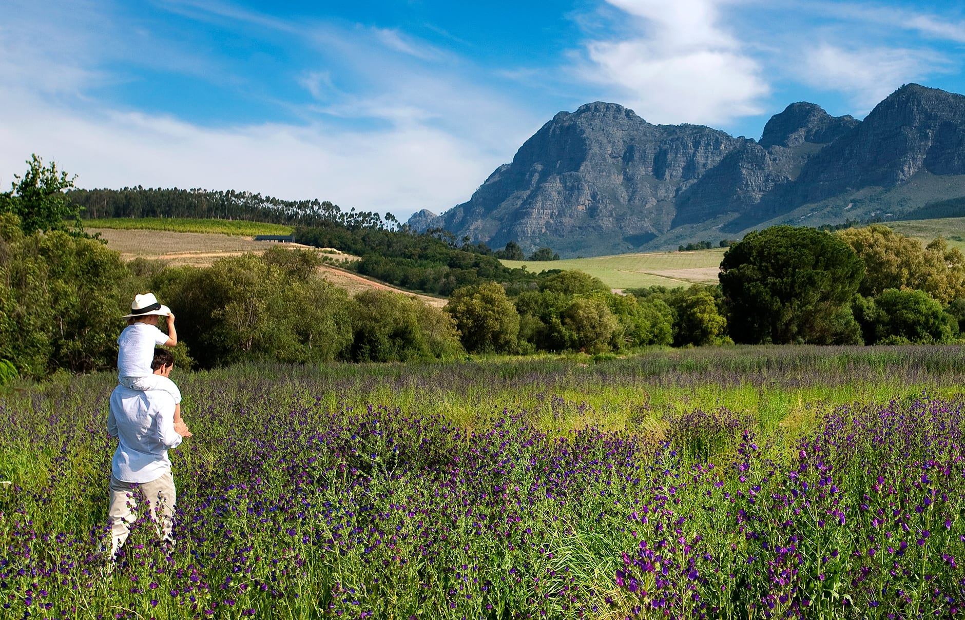 Babylonstoren, South Africa. Hotel Review by TravelPlusStyle. Photo © Babylonstoren