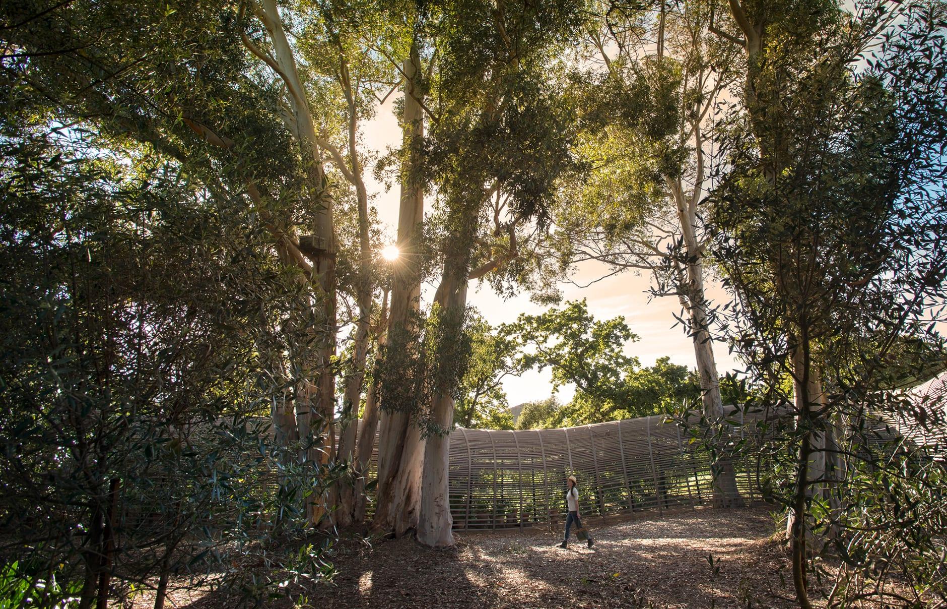 Babylonstoren, South Africa. © Babylonstoren