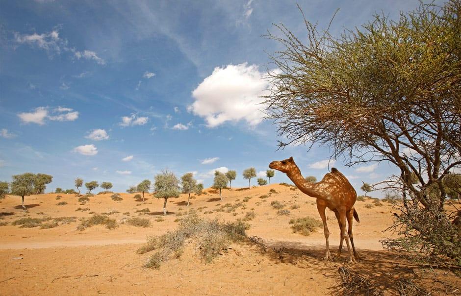 Destination image © Banyan Tree Hotels & Resorts