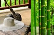 Four Seasons Resort Koh Samui. © Travel+Style