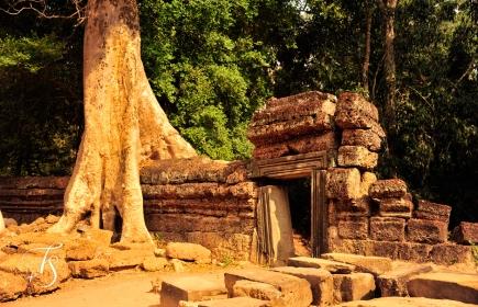 Ta Prohm, Siem Reap. Cambodia. ©Travel+Style