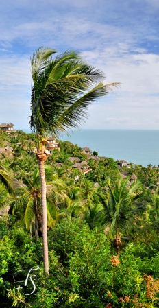 View from the restaurant. Four Seasons Resort Koh Samui. © Travel+Style