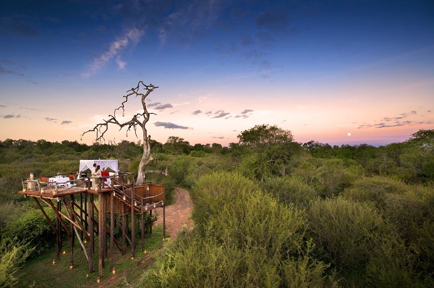 The Chalkley Treehouse. © Lion Sands Private Game Reserve