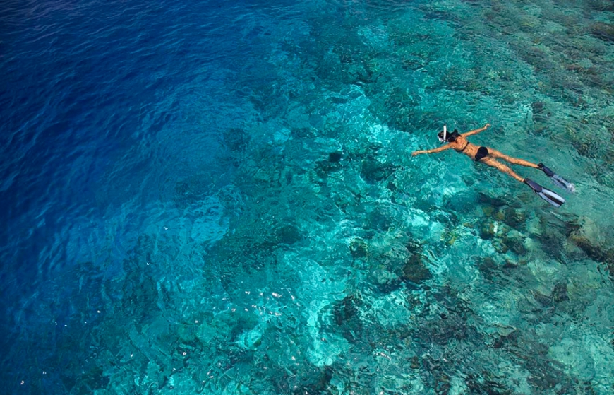 House Reef Snorkelling. Dusit Thani Maldives. ©  Dusit International
