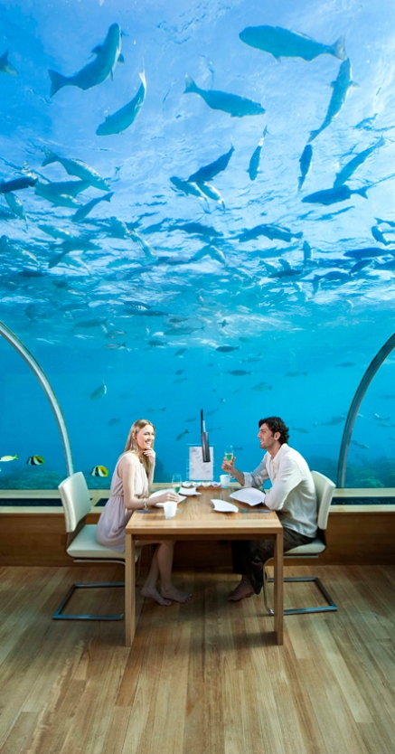 Dine At The Phenomenal Ithaa The Underwater Restaurant
