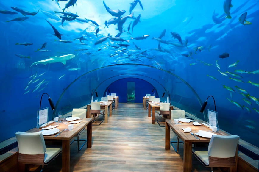 Ithaa Undersea Restaurant, Conrad Maldives Rangali Island. TravelPlusStyle.com