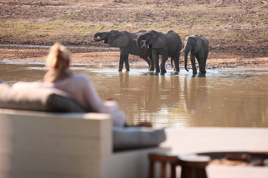 Watching eles drink from the lounge. Chinzombo Camp, Zambia. travelplusstyle.com