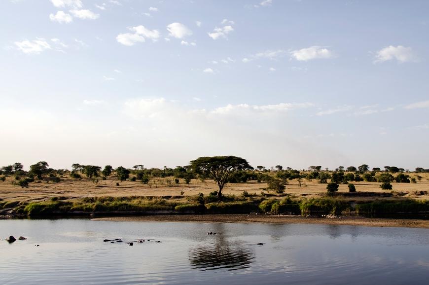 Nomads Lamai Serengeti. travelplusstyle.com