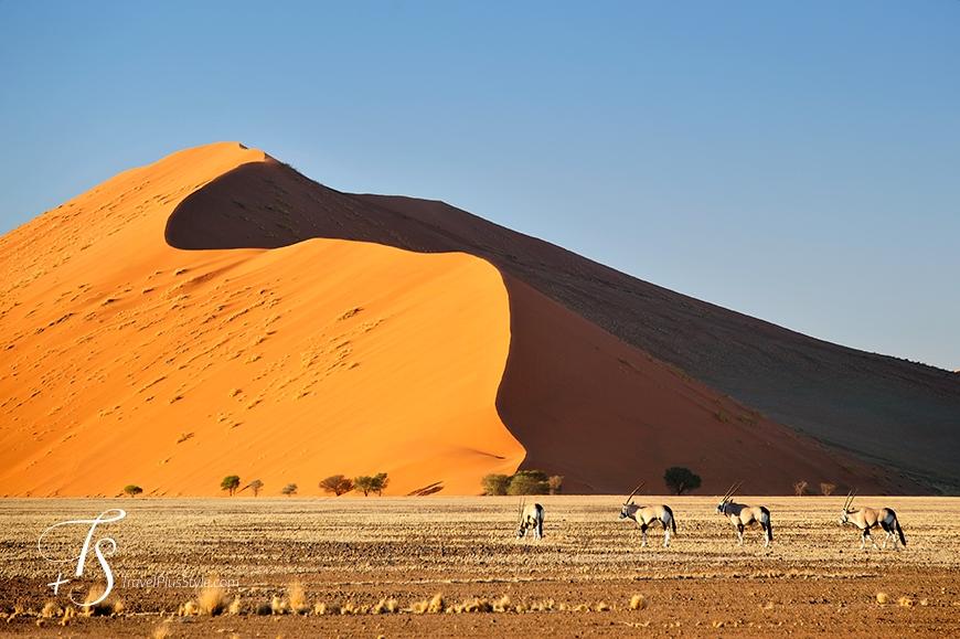 Sossusvlei, Namibia. TravelPlusStyle.com