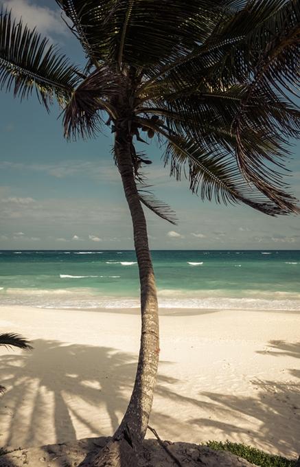 Papaya Playa Project  Mexico. TravelPlusStyle.com