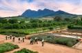 Babylonstoren, South Africa. Hotel Review by TravelPlusStyle. Photo © Babylonstoren