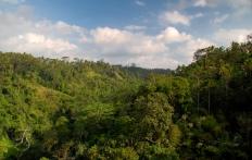 Ayung River Valley, Ubud Hanging Gardens Hotel. Photo © Travel+Style