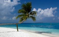 Rangalifinolhu. Conrad Maldives Rangali Island. © Travel+Style