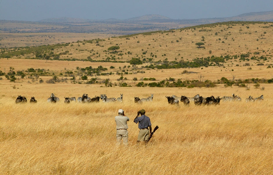 A walking Safari on the Cottar's vast Olderekesi Conservancy © Copyright Cottar's