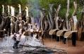 Molori Safari Lodge, South Africa © Molori Safari Lodge