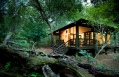 Phinda Forest Lodge © &Beyond