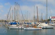 Barcelona's marina. © Travel+Style