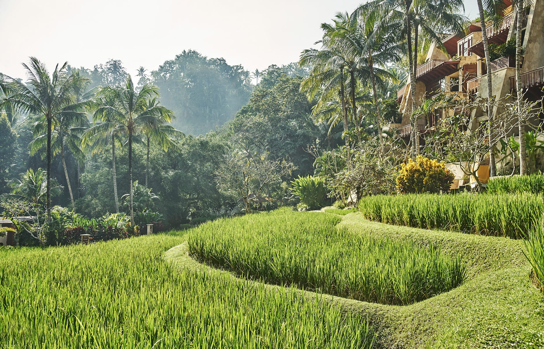 Four Seasons Resort Bali at Sayan, Ubud, Indonesia. Hotel Review by TravelPlusStyle. Photo © Four Seasons Hotels